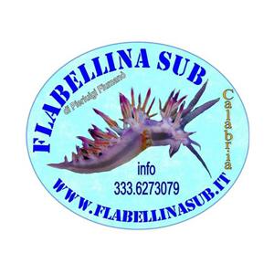 Flabellina Sub